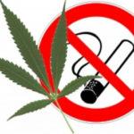 В чём связь между курением марихуаны и плохой успеваемостью?