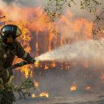 Площадь лесных пожаров в Бурятии удвоилась за сутки