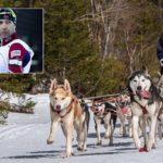 Бьорндален сменил средство передвижения: с лыж на сани
